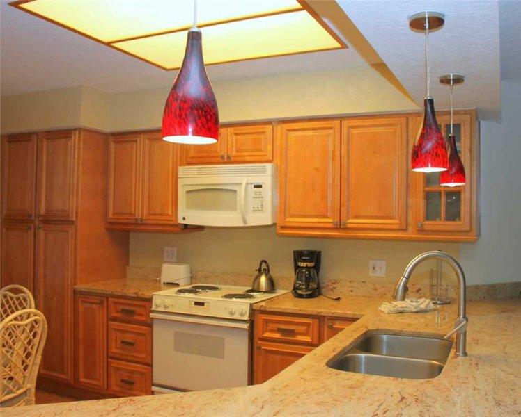 #105 Crimson Condos - Image 1 - Madeira Beach - rentals