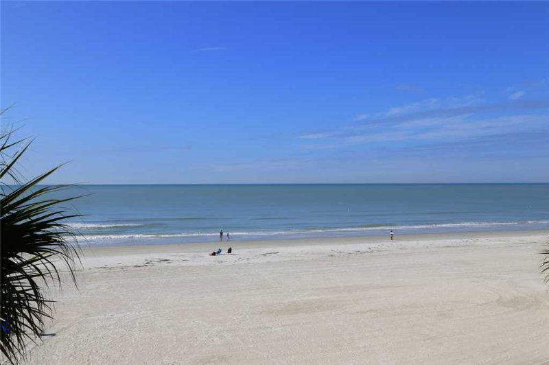 #301 The Shores Condo - Image 1 - Redington Shores - rentals