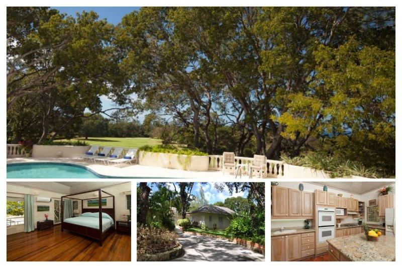 Barbados 344 - Image 1 - Sandy Lane - rentals