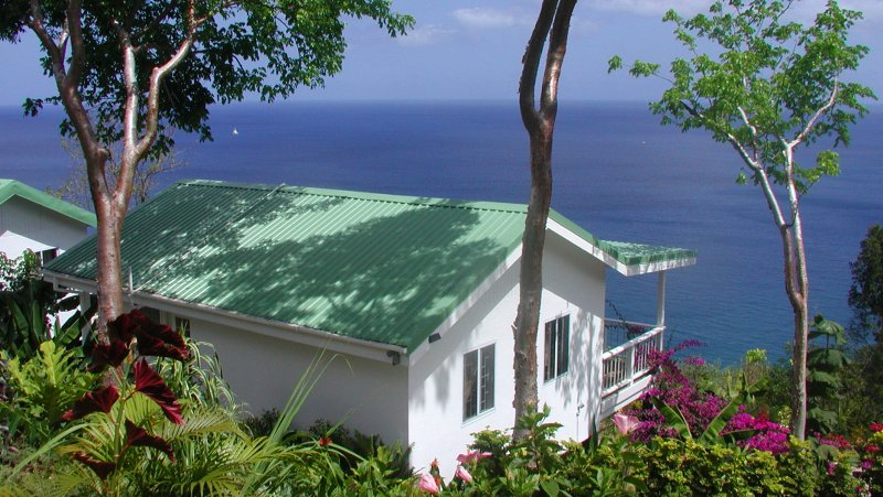 AVOCADO COTTAGE at NATURE'S PARADISE. OCEAN VIEW, TROPICAL GARDENS. - AVOCADO COTTAGE: SEA VIEW, 30FT POOL ECO-LUX! - Marigot Bay - rentals