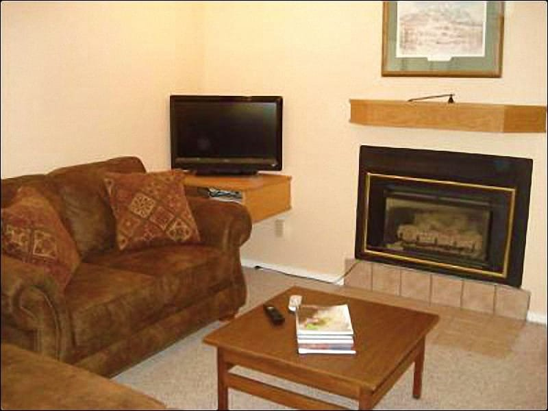 Flat-Screen TV and Gas Fireplace in the Living Room - Incredible Views of Mt. Crested Butte - New Furniture (1045) - Crested Butte - rentals