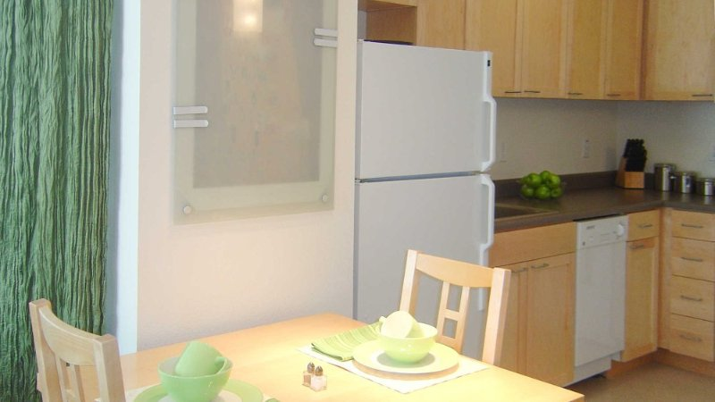 BEAUTIFUL AND MODERN 1 BEDROOM, 1 BATHROOM APARTMENT - Image 1 - Washington DC - rentals
