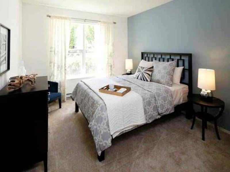 CLASSY 1 BEDROOM, 1 BATHROOM APARTMENT - Image 1 - Seattle - rentals