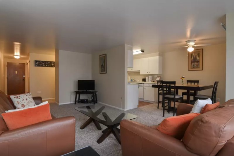 LUXURIOUS AND SPACIOUS 1 BEDROOM, 1 BATHROOM APARTMENT - Image 1 - Chicago - rentals