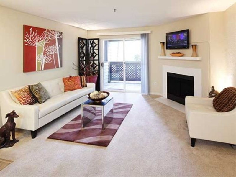 Bright and Sunny 2 Bedroom Apartment - Image 1 - University Place - rentals