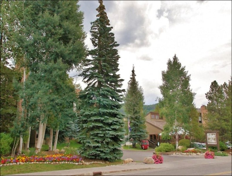 Exterior View shows off the mature landscaping - Heated Pool & Hot Tubs, 2 Tennis Courts - Private Shuttle in Ski Season, Free City Bus Year Round (2942) - Steamboat Springs - rentals