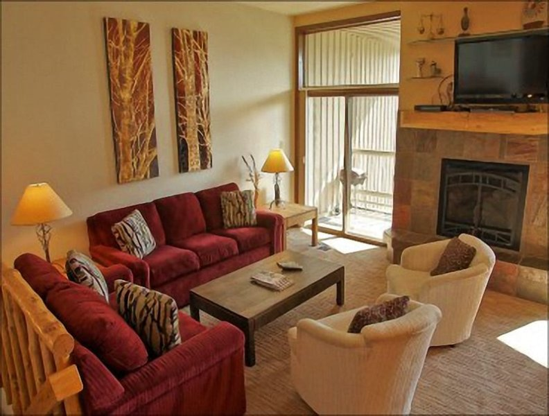 High Ceilings, Queen Pull Out Couch, Gas Fireplace, HDTV & DVD Player. - Nicely Updated, Good Amenities, Low Rates - Convenient Location - 200 Yards to Ski Slopes (3837) - Steamboat Springs - rentals