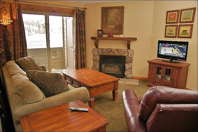 Comfortable Living Room with Queen pull out couch. - Affordable Rates, Quality Furnishings - Ground Floor Unit - Easy Access, Cool in Summer (4288) - Steamboat Springs - rentals