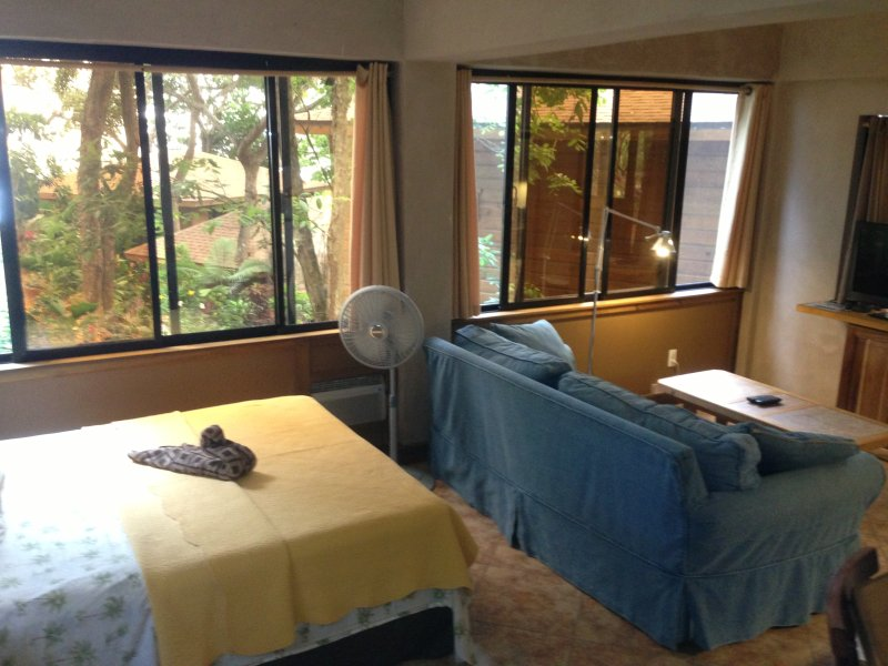 Spacious Villa with large two person shower!! - The Jellyfish Studio Villa has awesome Ocean Views - Roatan - rentals