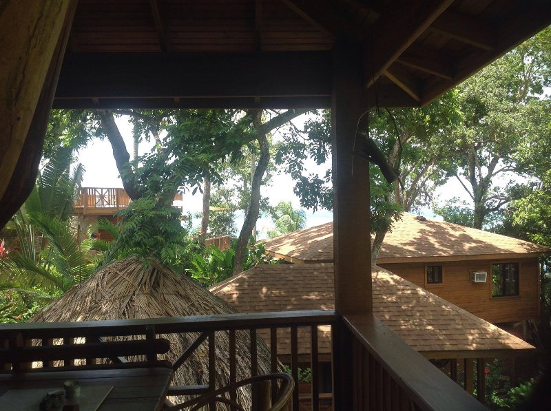 The view!! - TURTLE BEACH - Private Treehouse/Honeymoon Suite- 1 Bedroom Seahorse Villa - Roatan - rentals