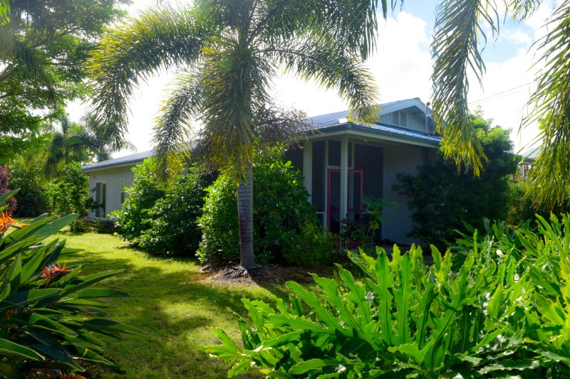 Piha Hou'oli Hale is a  2 bedroom in Sea View Estates in the Puna district on the Big Island - Piha Hau''oli Hale - Pahoa - rentals