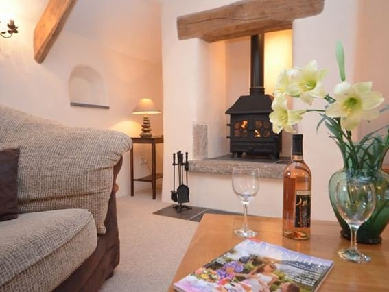 Relax by the woodburner - MEDVI - Cheriton Bishop - rentals