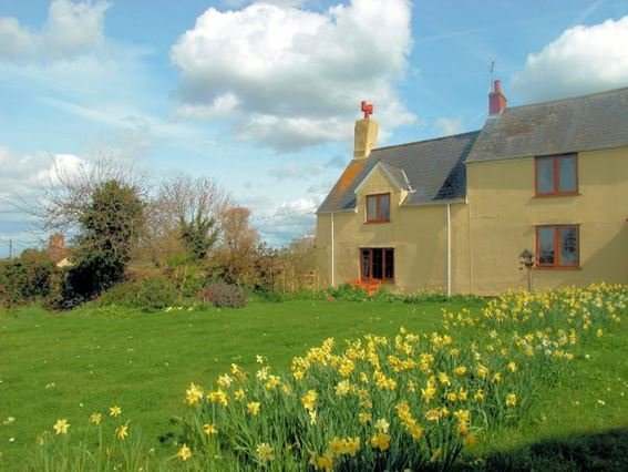 View of the property - PEPPC - Kilve - rentals