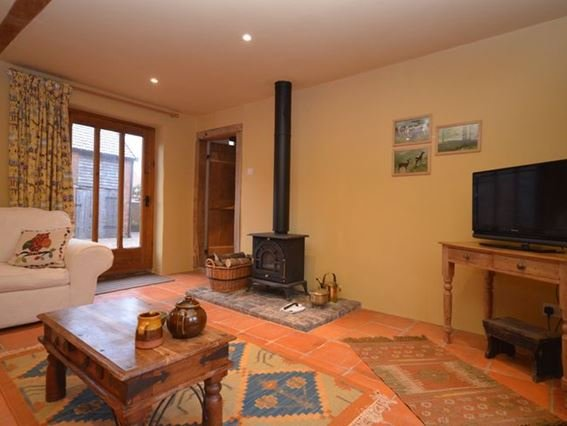 Cosy lounge with woodburner - FCH14486 - Farringdon - rentals