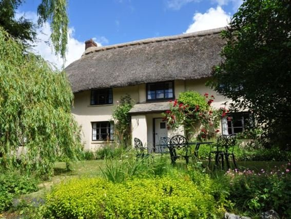 View of the lovely thatched property - SHILL - Devon - rentals