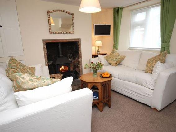 Lounge with woodburner - MAIDE - Dorset - rentals