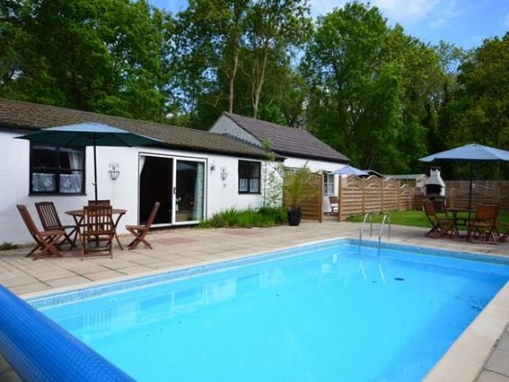 Pool area with view towards the lodges - POSN8 - Rackheath - rentals