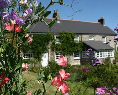 View of the properties - FCH5244 - Cornwall - rentals