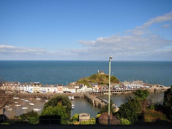 View of harbour from the apartment  - HVIEW - Ilfracombe - rentals
