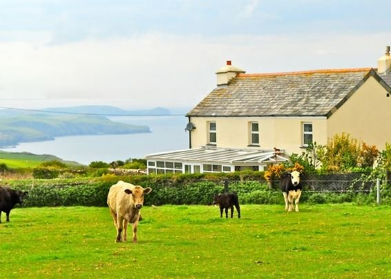 The property enjoys views over the setting for Doc Martin - PORTI - St Teath - rentals