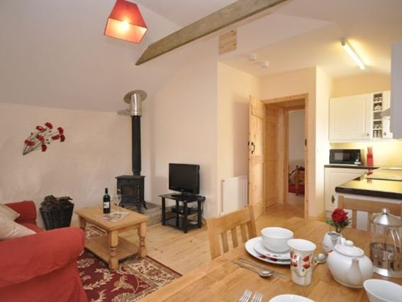 Lounge/kitchen/dining area with woodburner - IVBAN - Crows-an-Wra - rentals