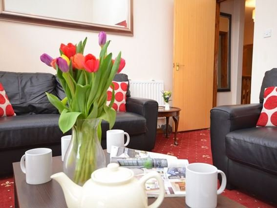 Relax in the lounge - QUART - Cornwall - rentals