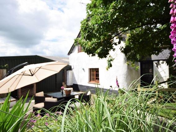 Private enclosed garden - FCH6902 - Knowstone - rentals