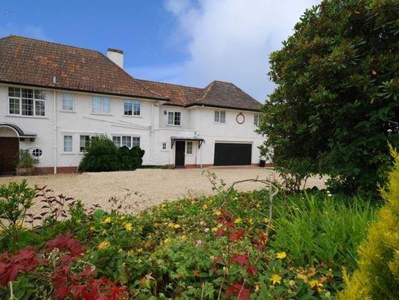 View towards the annexe - HAYES - Newton Poppleford - rentals