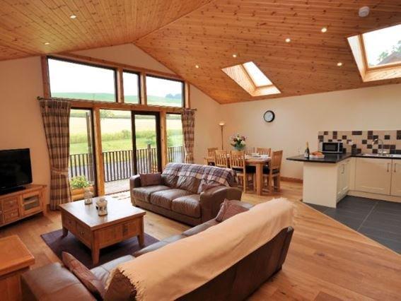Spacious open-plan lounge / kitchen / diner - WILLC - Abernyte - rentals