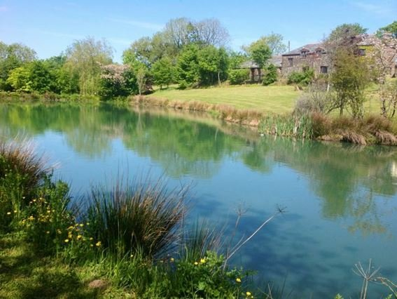 View towards the property from the beautiful lake - LAMER - Holsworthy - rentals