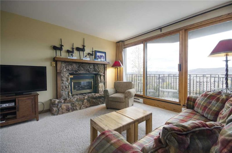 Bronze Tree Condominiums - BT301 - Image 1 - Steamboat Springs - rentals