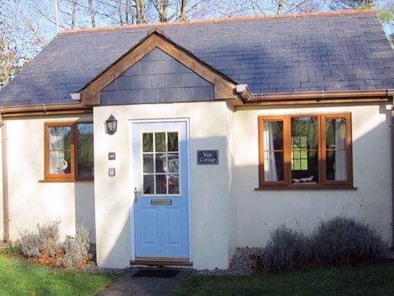 Pretty Cornish cottage - VALEC - Davidstow - rentals