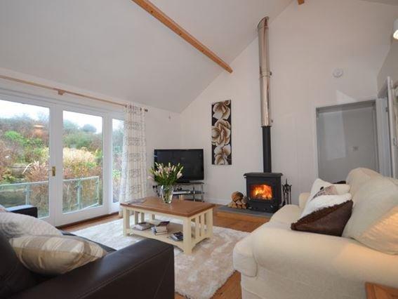 Lounge area with woodburner - RGTON - Saint Ives - rentals