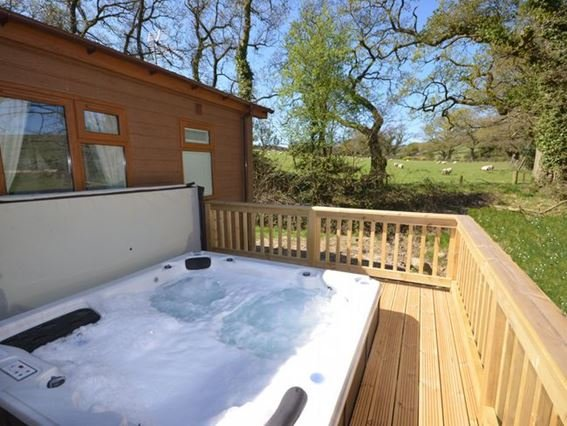 Sunken hot tub with views across surrounding fields - 36128 - Devon - rentals
