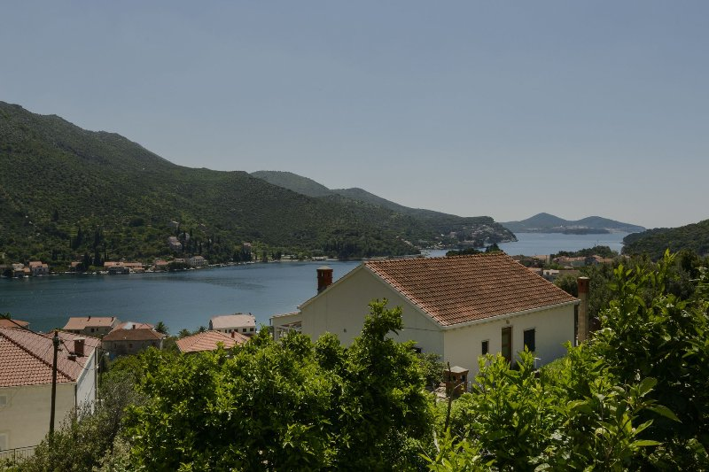 house - Gordana A1(4) - Zaton (Dubrovnik) - Zaton (Dubrovnik) - rentals