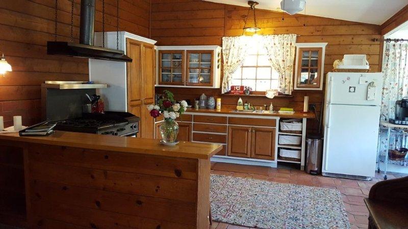 Furnished 2-Bedroom Home at Ortega Hwy & Tenaja Truck Trail Lake Elsinore - Image 1 - Lake Elsinore - rentals