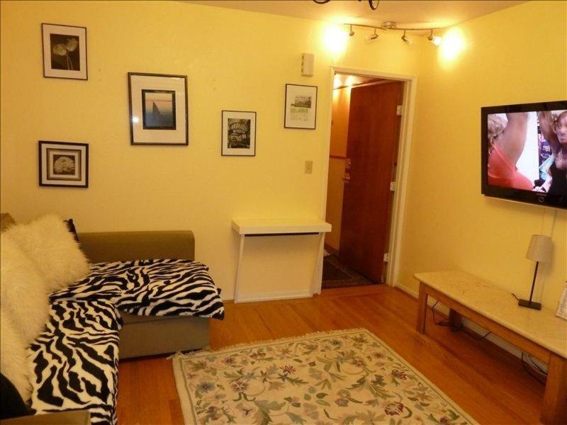 Extraordinary 1 Bedroom Apartment in San Francisco Near UCSF - Image 1 - San Francisco - rentals