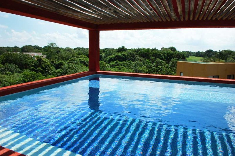 Tranquil Penthouse in Sian Kaan Complex within Playacar - Image 1 - Playa del Carmen - rentals