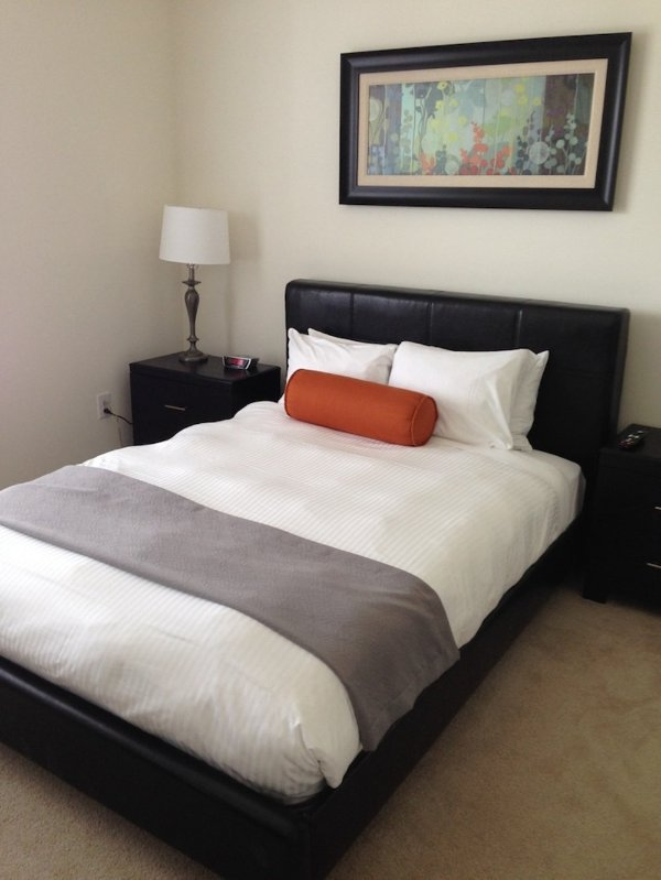 BEAUTIFUL AND RELAXING 2 BEDROOM 2 BATHROOM FURNISHED APARTMENT IN LEXINGTON - Image 1 - Lexington - rentals