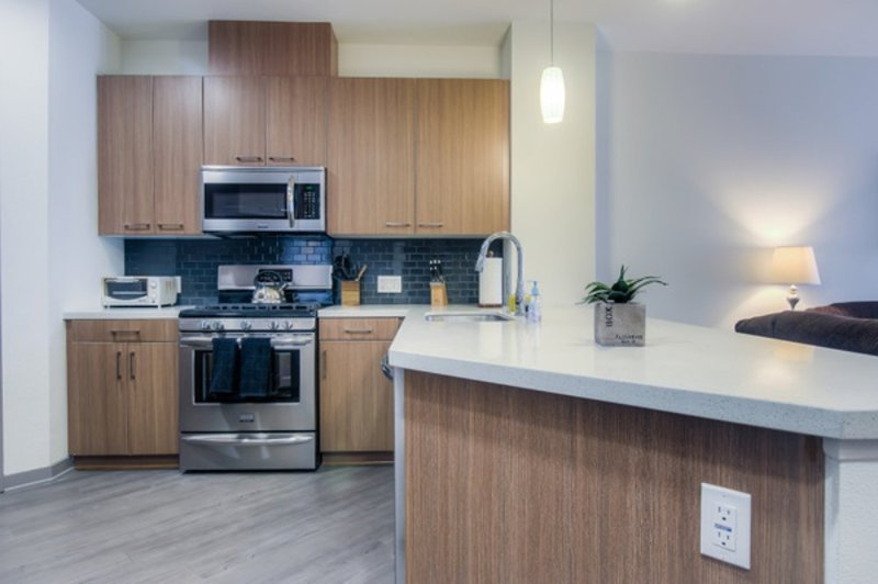 UPSCALE FURNISHED 1 BEDROOM 1 BATHROOM APARTMENT - Image 1 - Chicago - rentals