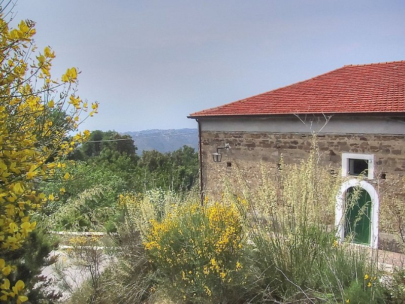 Villa Trotta - Image 1 - Perdifumo - rentals