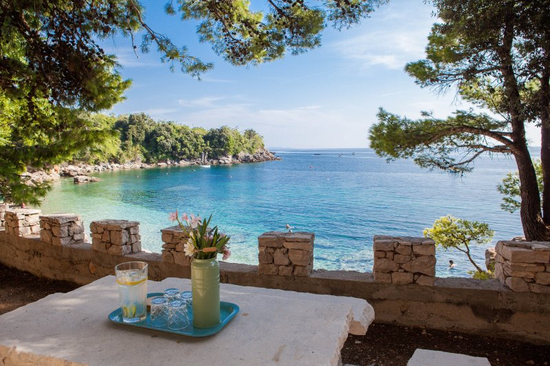 Afternoon Cocktails overlooking the Adriatic - Villa Kustra -American Owned- Beach Front - Poluotok Peljesac - rentals