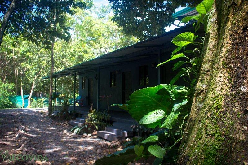 EcoVida Vacation Accommodation at Playa Bejuco - Image 1 - Playa Bejuco - rentals