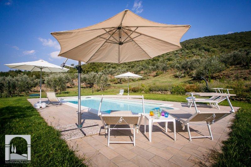Villa San Martino beautiful hilly position - Image 1 - Cortona - rentals