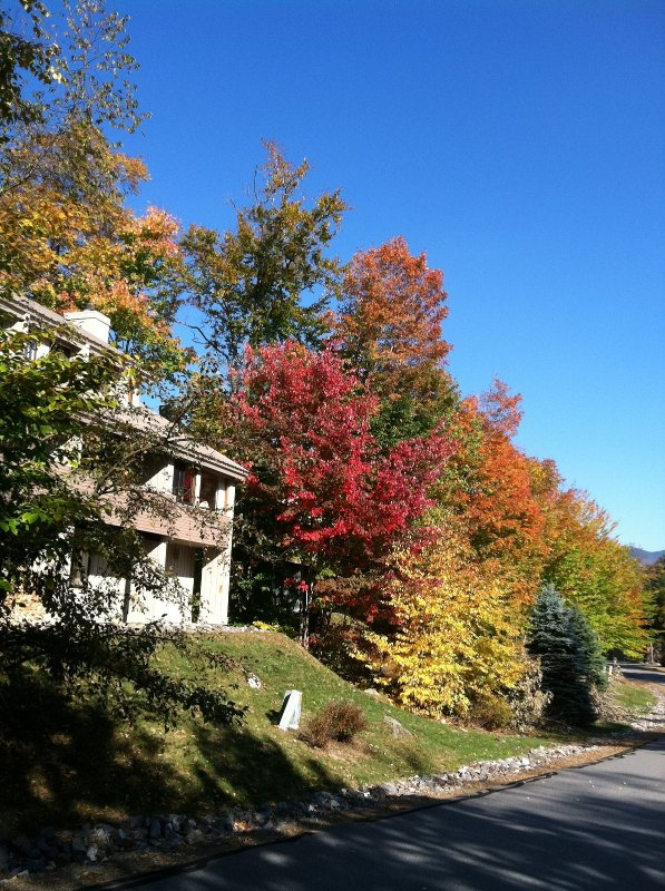 Summer and Fall Escape to Glorious White Mountains - Image 1 - Lincoln - rentals