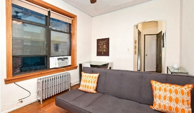 ADORABLE AND SPACIOUS 1 BEDROOM, 1 BATHROOM APARTMENT - Image 1 - New York City - rentals