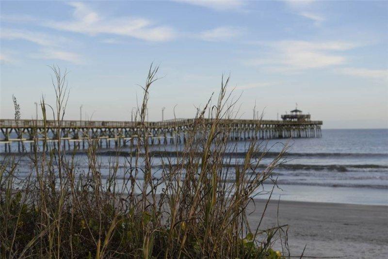 Pier Watch Villas #108 - Image 1 - North Myrtle Beach - rentals