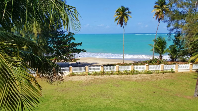 Malibu Beach Luxury Resort - Ocean View Beach Luxury Resort 15 m from SJU airport - Loiza - rentals