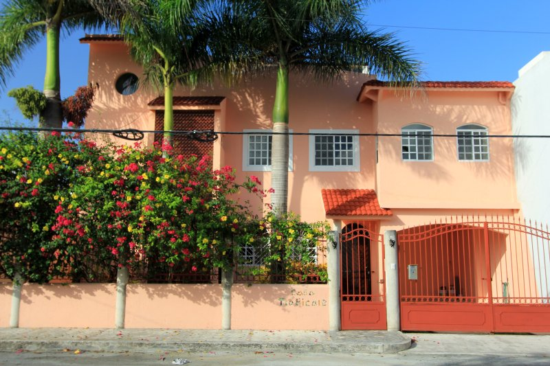 Casa Tropicale - Your Cozumel Home, Downtown , Garden and Private Pool.  Spacious, Roof Top Palapa - Casa Tropicale w/ Pool  Residential Area In Town - Cozumel - rentals
