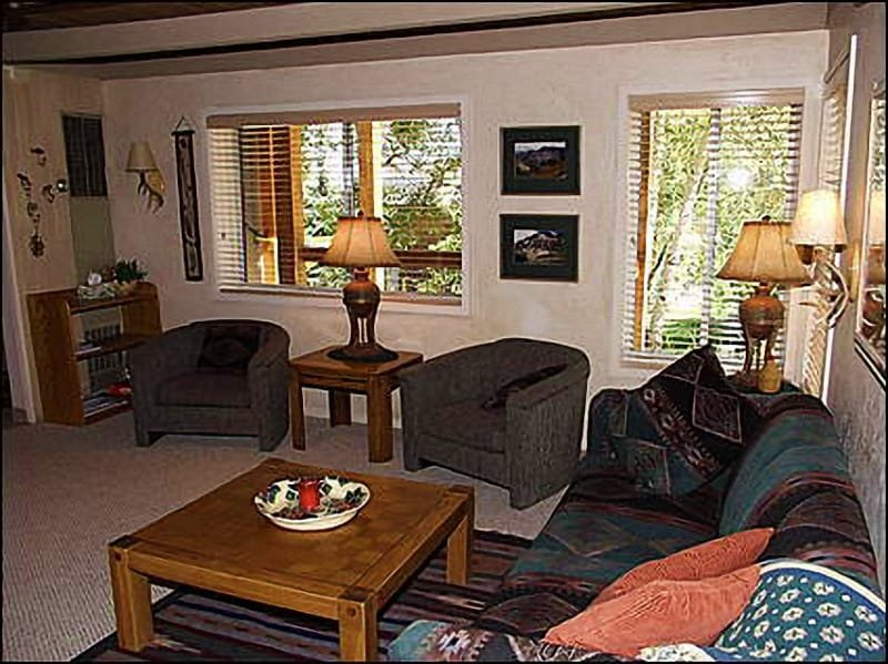 Living Room - Close to new Base Village - Walk to Restaurants and Shops (1311) - Snowmass Village - rentals